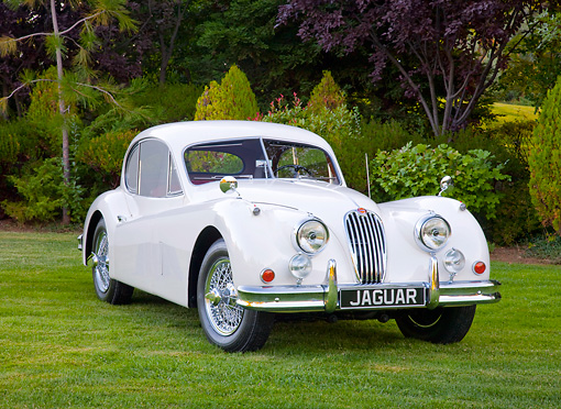 AUT 12 RK0365 01 © Kimball Stock 1955 Jaguar XK140 FHC SE White 3/4 Front View On Grass By Trees