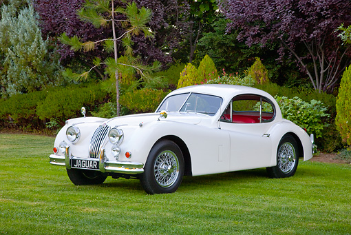 AUT 12 RK0366 01 © Kimball Stock 1955 Jaguar XK140 FHC SE White 3/4 Front View On Grass By Trees