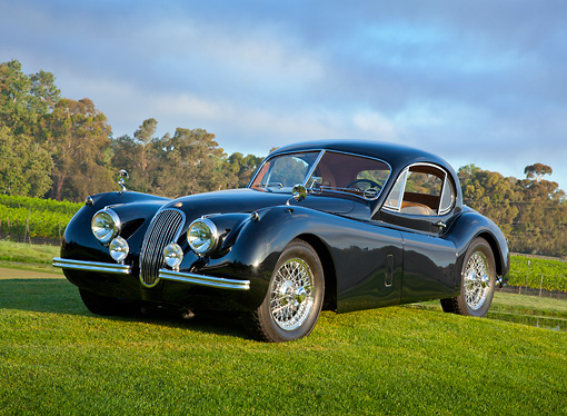 AUT 12 RK0369 01 © Kimball Stock 1953 Jaguar XK120 Black 3/4 Front View On Grass By Trees
