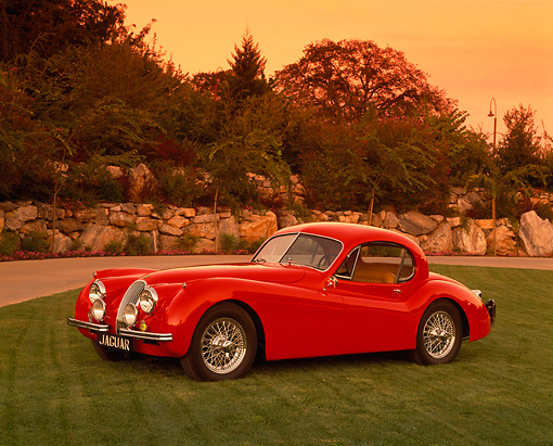 AUT 12 RK0152 03 © Kimball Stock 1954 Jaguar XK120 FHC Red Side 3/4 Side View On Grass By Trees