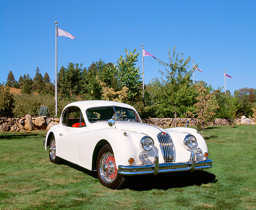 AUT 12 RK0167 01 © Kimball Stock 1956 Jaguar XK1X40 White 3/4 Front View On Grass By Trees And Flag Poles Blue Sky