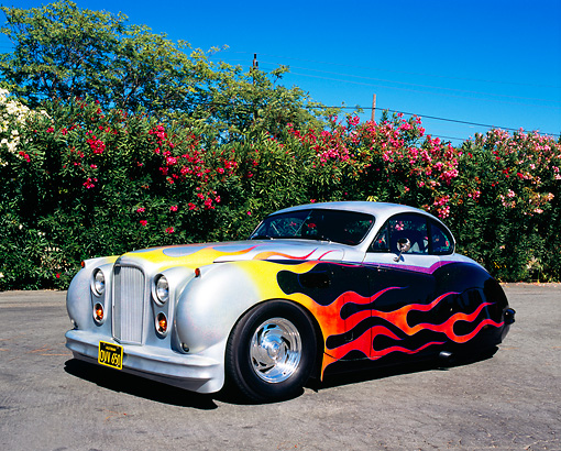 AUT 12 RK0202 02 © Kimball Stock 1952 Jaguar Mark VII Silver With Flames 3/4 Front View On Pavement By Flowering Shrubs