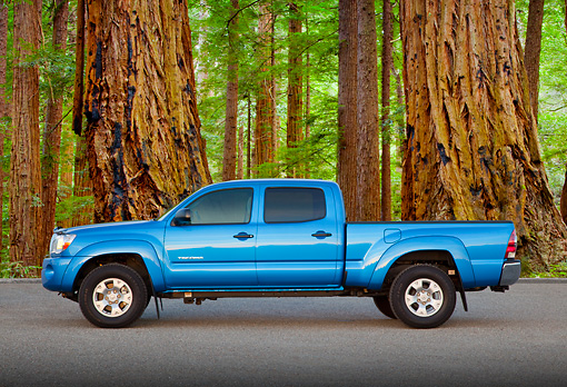 AUT 14 BK0069 01 © Kimball Stock 2011 Toyota Tacoma Double Cab Pickup Truck Blue Profile View On Pavement By Redwood Trees