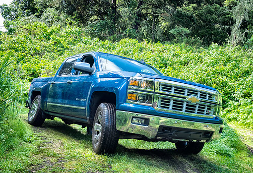AUT 14 BK0104 01 © Kimball Stock 2015 Chevrolet Silverado 1500 Z71 4WD LTZ Crew Pickup 3/4 Front View Driving Through Forest