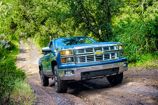 AUT 14 BK0106 01 © Kimball Stock 2015 Chevrolet Silverado 1500 Z71 4WD LTZ Crew Pickup 3/4 Front View Driving Through Forest