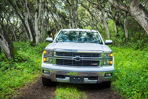 AUT 14 BK0108 01 © Kimball Stock 2015 Chevrolet Silverado 1500 Z71 4WD LTZ Crew Pickup White Front View Driving Through Forest
