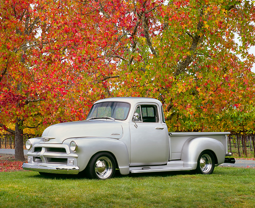 AUT 14 RK1056 03 © Kimball Stock 1954 Chevy 3100 1/2 Ton Custom Pick Up Truck Silver 3/4 Side View On Grass By Autumn Trees