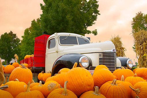AUT 14 RK1314 01 © Kimball Stock International Truck Beige Flatbed Truck Low 3/4 Front View By Pumpkins