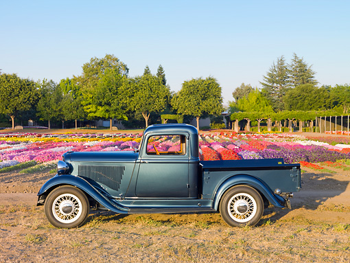 AUT 14 RK1566 01 © Kimball Stock 1932 Dodge Pickup Truck Green Profile View On Dry Grass And Dirt By Flowers And Trees