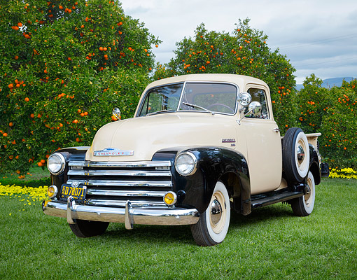 AUT 14 RK1818 01 © Kimball Stock 1951 Chevrolet 3100 1/2 Ton Pickup Tan And Black 3/4 Front View On Grass By Orange Trees