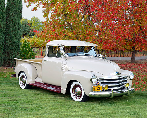 AUT 14 RK1852 01 © Kimball Stock 1950 Chevrolet 3100 Pickup Tan 3/4 Front View On Grass By Autumn Vineyard