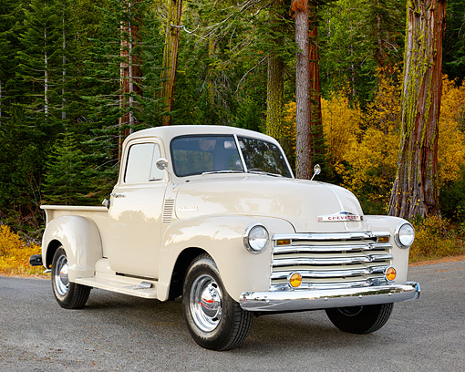 AUT 14 RK1862 01 © Kimball Stock 1952 Chevrolet Pickup Truck Cream 3/4 Front View On Pavement By Redwood Trees