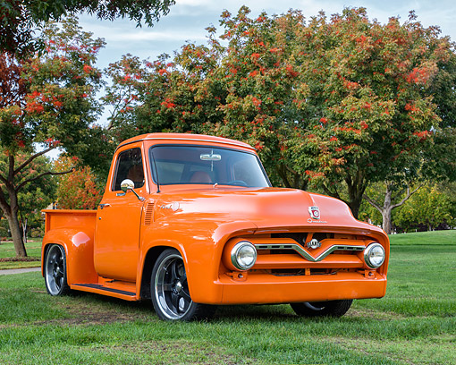 AUT 14 RK1907 01 © Kimball Stock 1955 Ford F-100 Pickup Orange 3/4 Front View On Grass By Trees