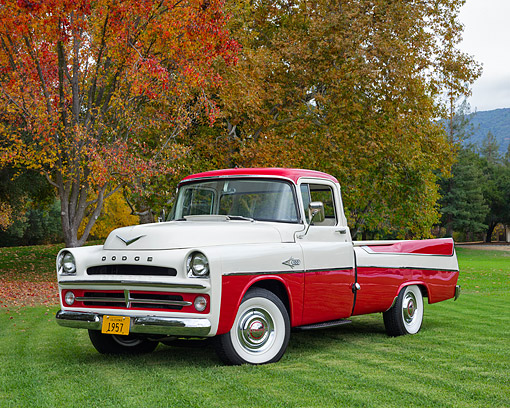 AUT 14 RK1909 01 © Kimball Stock 1957 Dodge Sweptside Pickup Red And White 3/4 Front View On Grass