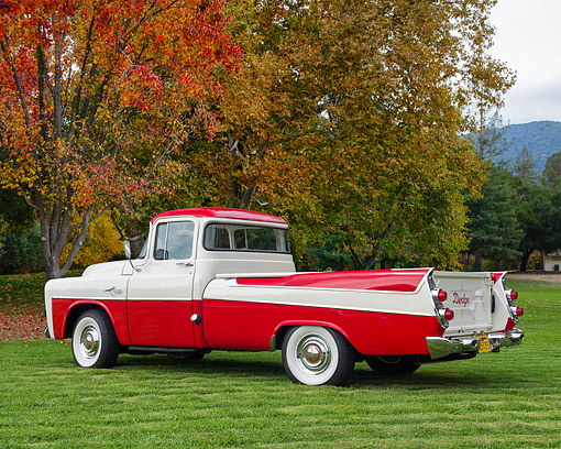 AUT 14 RK1910 01 © Kimball Stock 1957 Dodge Sweptside Pickup Red And White 3/4 Rear View On Grass