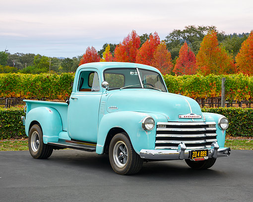 AUT 14 RK1958 01 © Kimball Stock 1953 Chevrolet 3100 Pickup Light Green 3/4 Front View By Vineyard And Autumn Trees