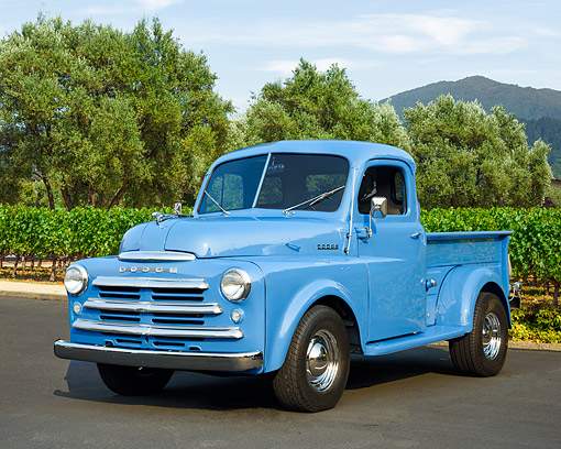 AUT 14 RK1980 01 © Kimball Stock 1950 Dodge B-2-B-108 1/2 Ton Pickup Blue 3/4 Front View By Vineyard And Trees
