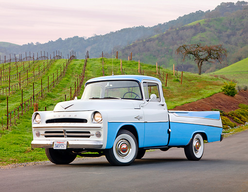 AUT 14 BK0002 01 © Kimball Stock 1957 Dodge Sweptside Pickup Truck Blue And White 3/4 Front View On Road By Vineyard