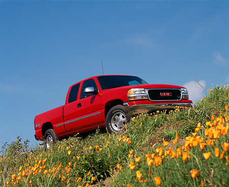 AUT 14 RK0190 02 © Kimball Stock 1999 GMC Sierra Truck Red Low 3/4 Front View On Hill By Flowers