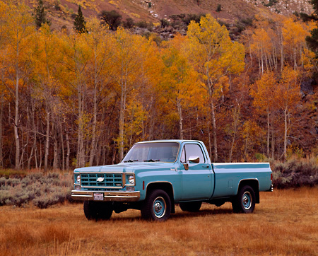 AUT 14 RK0300 01 © Kimball Stock 1978 Chevrolet C20 1/2 Ton Truck Seafoam Green 3/4 Side View By Fall Trees