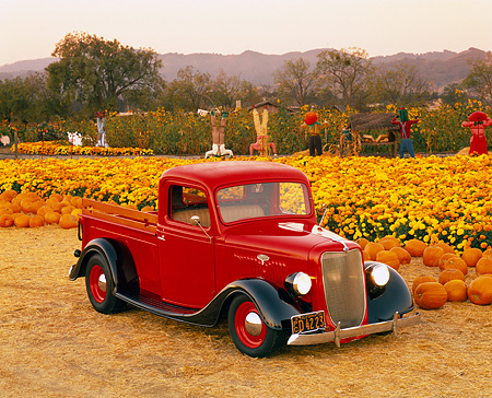 AUT 14 RK0319 10 © Kimball Stock 1935 Ford 1/2 Ton Pickup Truck Red 3/4 Front View At Pumpkin Patch Filtered