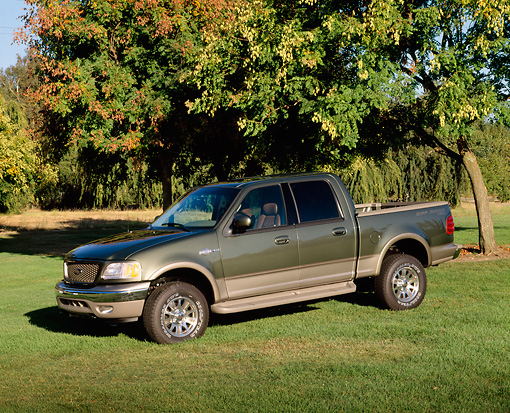 AUT 14 RK0606 10 © Kimball Stock 2001 Ford King Ranch F-150 Green And Gold 3/4 Front View On Grass By Trees