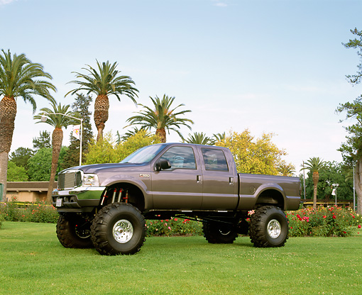AUT 14 RK0699 04 © Kimball Stock 2002 Ford F-350 Shadow Gray 3/4 Front View On Grass By Palm Trees And Flowers
