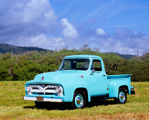 AUT 14 RK1053 03 © Kimball Stock 1955 Ford F-100 Seafoam Green 3/4 Side View On Grass Blue Sky Clouds