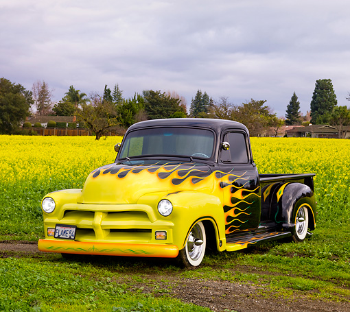AUT 14 RK1458 01 © Kimball Stock 1954 Chevrolet Pickup Truck Hot Rod Black With Yellow Flames 3/4 Front View In Field Of Yellow Wildflowers
