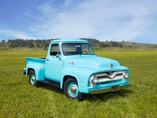 AUT 14 RK1493 01 © Kimball Stock 1955 Ford F-100 Pickup Truck Sea Foam Green 3/4 Front View On Grass