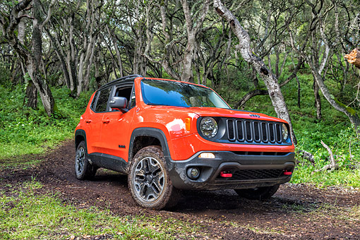 AUT 15 BK0051 01 © Kimball Stock 2015 Jeep Renegade Trailhawk 3/4 Front View Driving Through Mud In Forest