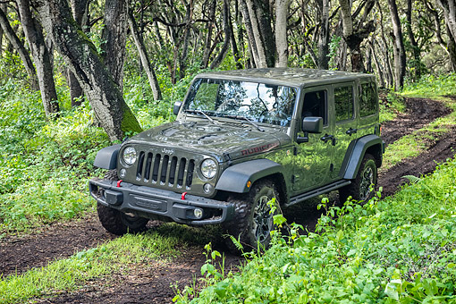AUT 15 BK0052 01 © Kimball Stock 2015 Jeep Wrangler Rubicon Unlimited Driving Through Mud In Forest