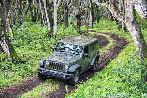 AUT 15 BK0053 01 © Kimball Stock 2015 Jeep Wrangler Rubicon Unlimited Driving Through Mud In Forest