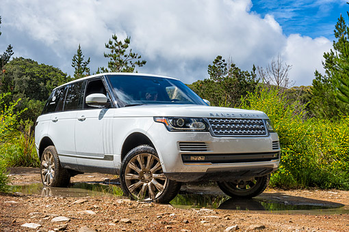 AUT 15 BK0054 01 © Kimball Stock 2015 Range Rover White 3/4 Front View In Dirt By Trees