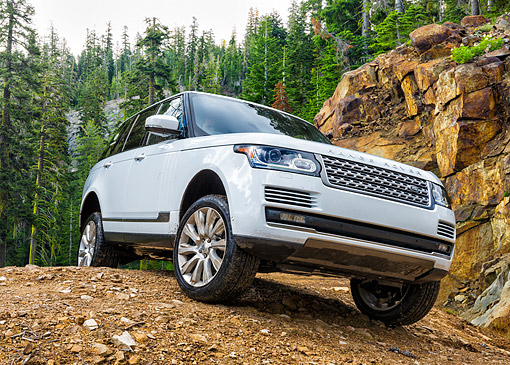 AUT 15 BK0056 01 © Kimball Stock 2015 Range Rover White 3/4 Front View Driving Over Dirt In Forest