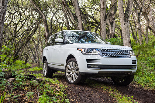 AUT 15 BK0058 01 © Kimball Stock 2015 Range Rover White 3/4 Front View Driving Through Forest