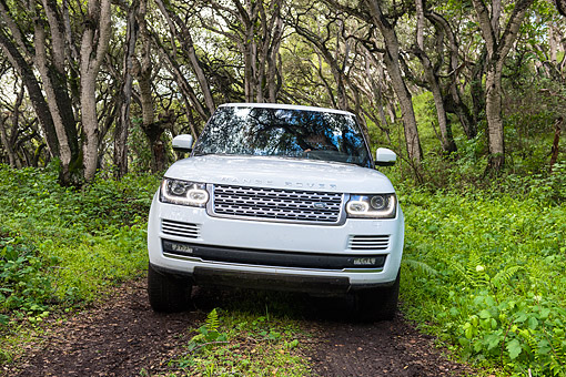 AUT 15 BK0059 01 © Kimball Stock 2015 Range Rover White Front View Driving Through Forest