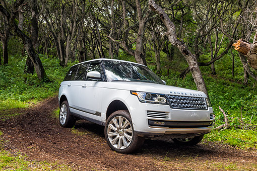 AUT 15 BK0060 01 © Kimball Stock 2015 Range Rover White Front View Driving Through Forest
