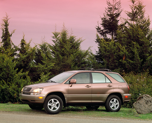 AUT 15 RK0148 01 © Kimball Stock 1999 Lexus RX300 Bronze 3/4 Front View On Grass By Trees Filtered