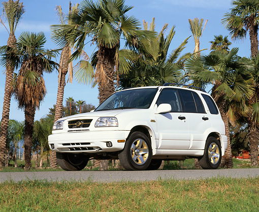 AUT 15 RK0301 16 © Kimball Stock 2000 Suzuki Grand Vitara White Low 3/4 Front View On Pavement By Palm Trees