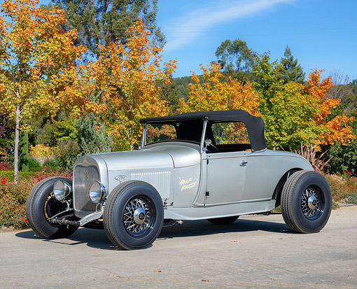 AUT 18 RK0872 01 © Kimball Stock 1928 Ford Model A Roadster Silver 3/4 Front View By Autumn Trees