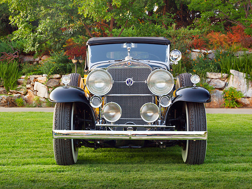 AUT 19 RK1014 01 © Kimball Stock 1931 Cadillac 370A Roadster Yellow And Black Front View On Grass By Trees