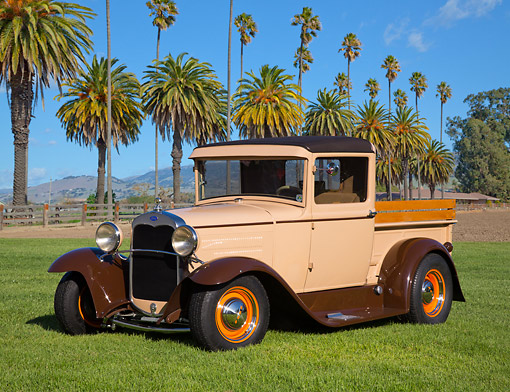 AUT 19 RK1043 01 © Kimball Stock 1931 Ford Model A Beige 3/4 Front View On Grass By Palm Trees