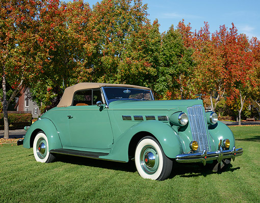 AUT 19 RK1106 01 © Kimball Stock 1937 Packard 120 Coupe Convertible Sage Green 3/4 Front View On Grass By Autumn Trees