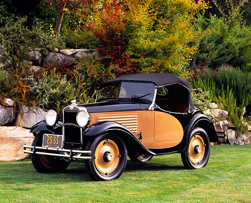 AUT 19 RK0564 01 © Kimball Stock 1931 American Austin 142 Roadster Black And Tan 3/4 Front View On Grass By Trees