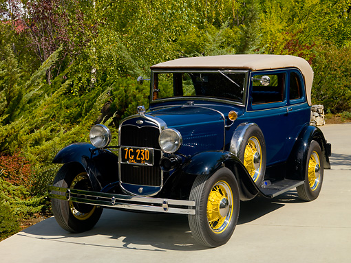 AUT 19 RK0690 01 © Kimball Stock 1931 Ford Model A 400 Convertible Sedan Washington Blue Front 3/4 View On Pavement By Shrubs Trees