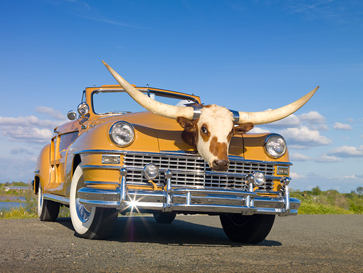 AUT 20 RK0459 01 © Kimball Stock 1947 Chrysler Town & Country Tan Convertible With Longhorn Steer Head 3/4 Front View On Pavement