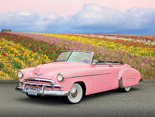 AUT 20 RK0557 01 © Kimball Stock 1949 Chevrolet Deluxe Convertible Pink 3/4 Front View On Pavement By Field Of Flowers