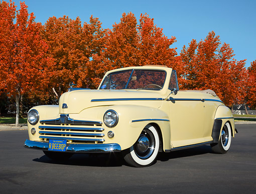 AUT 20 RK0649 01 © Kimball Stock 1947 Ford Convertible Yellow 3/4 Front View On Pavement By Autumn Trees