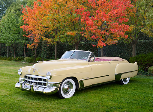 AUT 20 RK0664 01 © Kimball Stock 1949 Cadillac Series 62 Convertible Colonial Cream 3/4 Front View On Grass By Autumn Trees